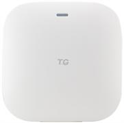 TG-NET WA3120i